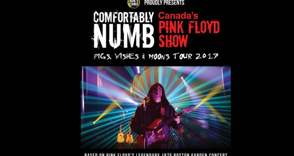comfortably-numb-feature