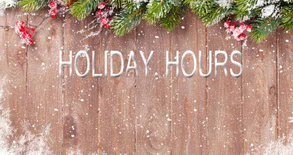 holiday_hours_feature